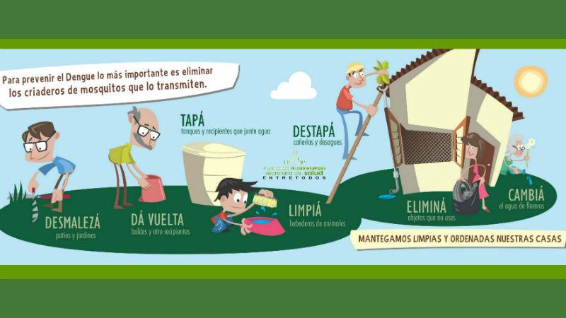 El informante prevenci n evitar los criaderos de mosquito for Como eliminar los mosquitos del jardin